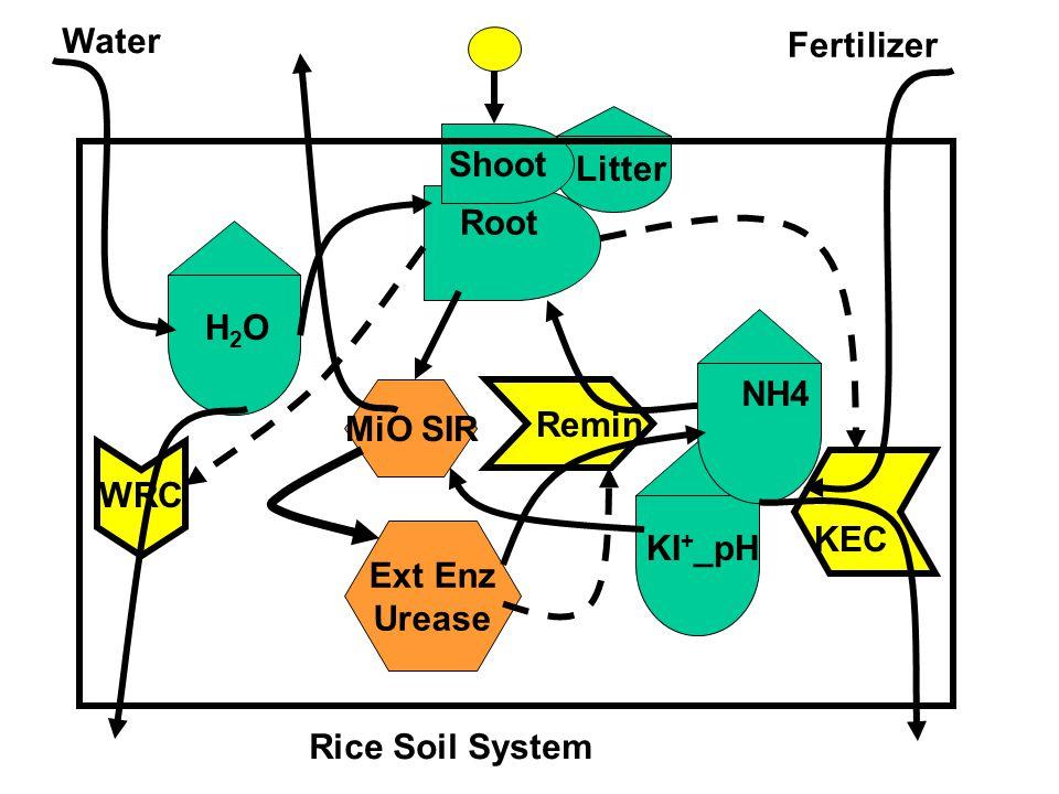 Water Fertilizer. Shoot. Litter. Root. H2O. NH4. MiO SIR. Remin. WRC. KEC. Ext Enz Urease.