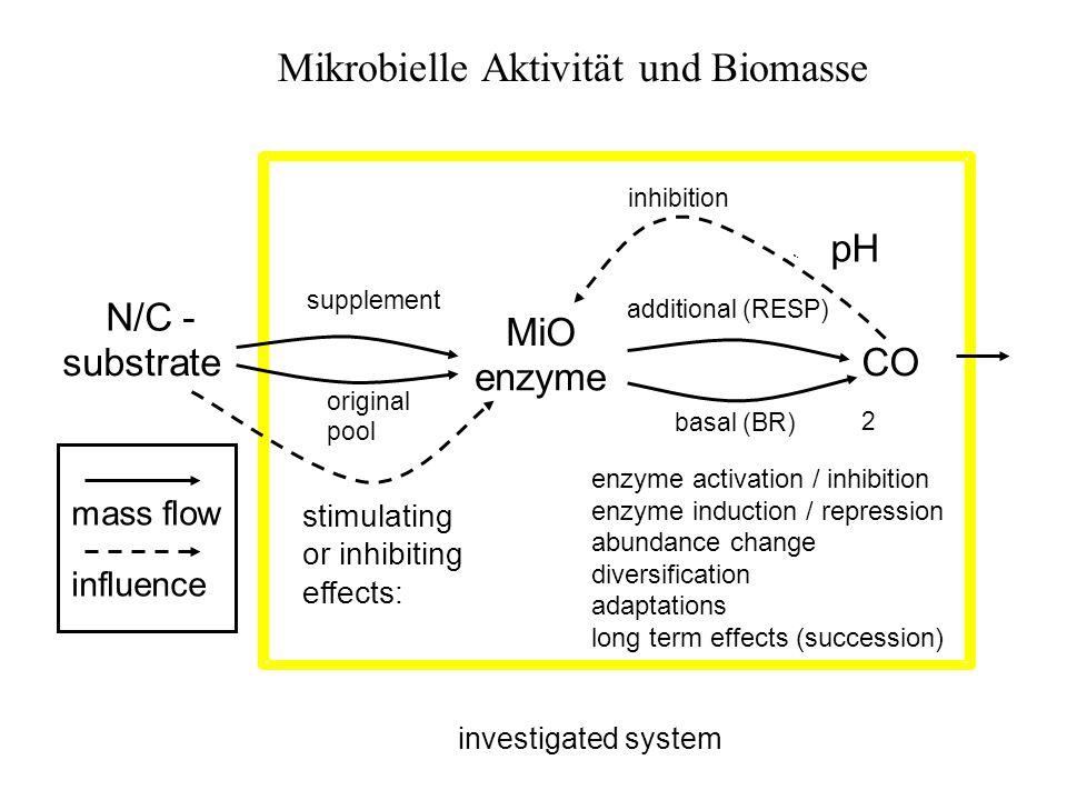 Mikrobielle Aktivität und Biomasse