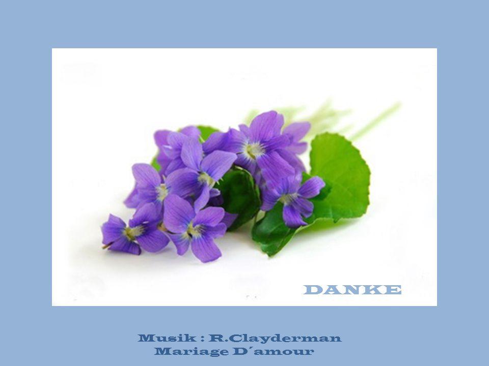 DANKE Musik : R.Clayderman Mariage D´amour