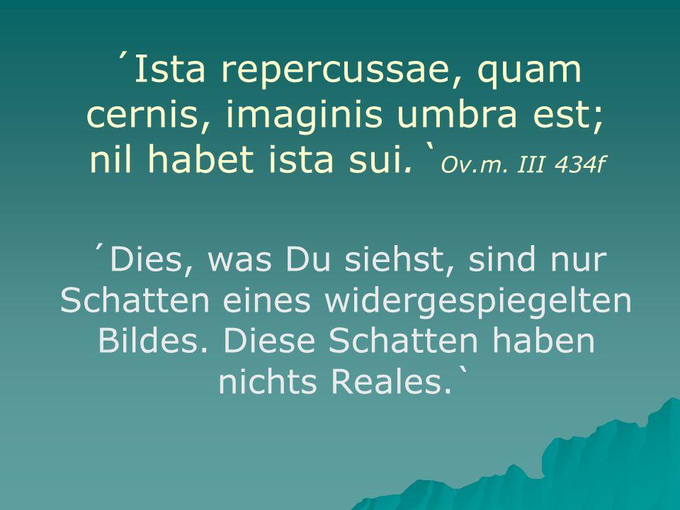 ´Ista repercussae, quam cernis, imaginis umbra est; nil habet ista sui