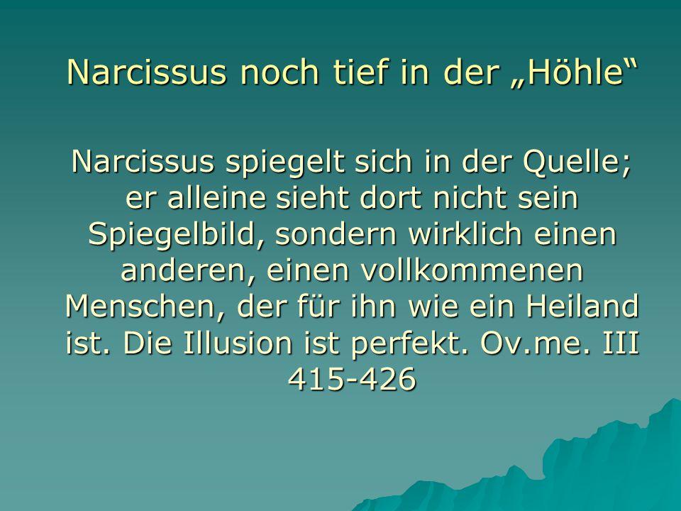 """Narcissus noch tief in der """"Höhle"""