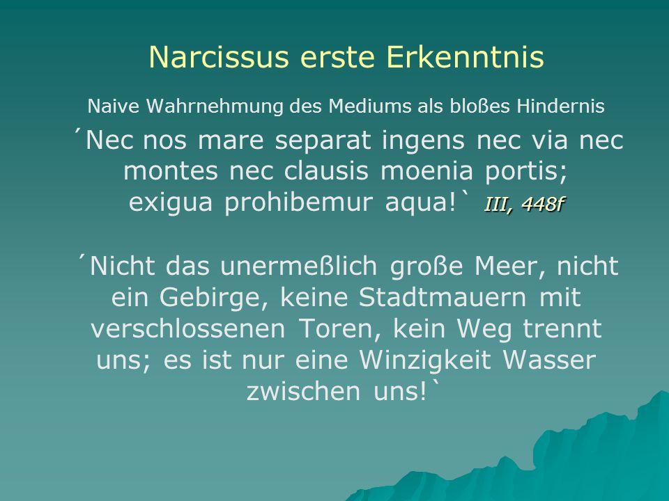 Narcissus erste Erkenntnis