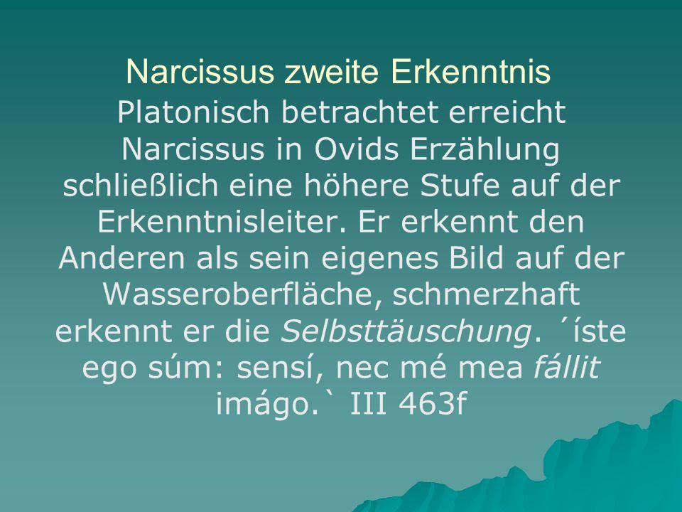Narcissus zweite Erkenntnis
