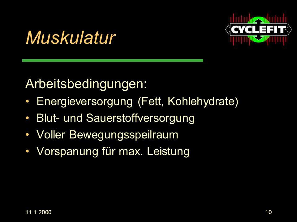 Muskulatur Arbeitsbedingungen: Energieversorgung (Fett, Kohlehydrate)