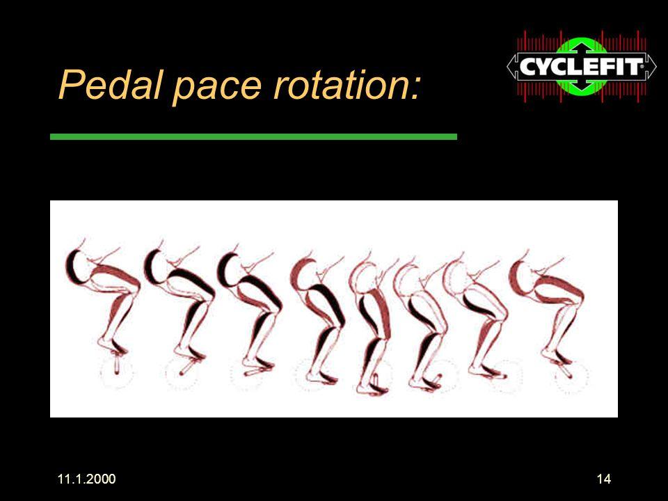 Pedal pace rotation: Hier sieht man sehr schön die beanspruchten Muskeln in den einzelnen Phasen. Schub.