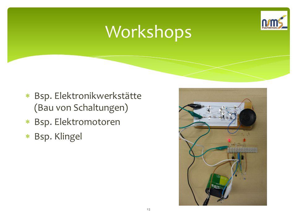 Workshops Bsp. Elektronikwerkstätte (Bau von Schaltungen)