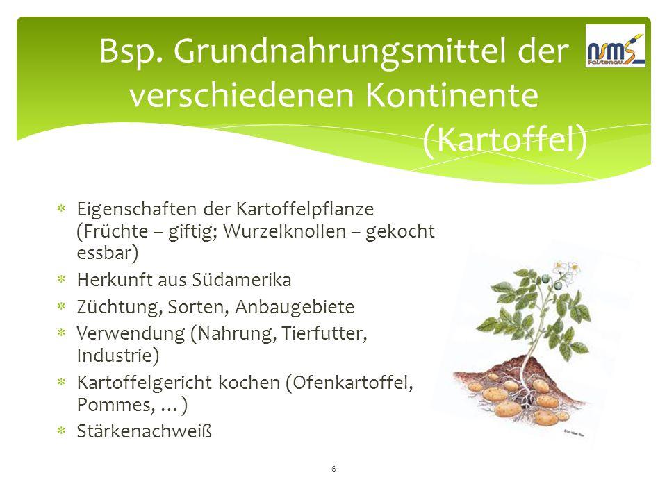 Bsp. Grundnahrungsmittel der verschiedenen Kontinente (Kartoffel)
