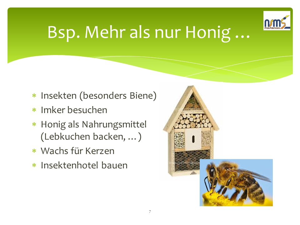Bsp. Mehr als nur Honig … Insekten (besonders Biene) Imker besuchen