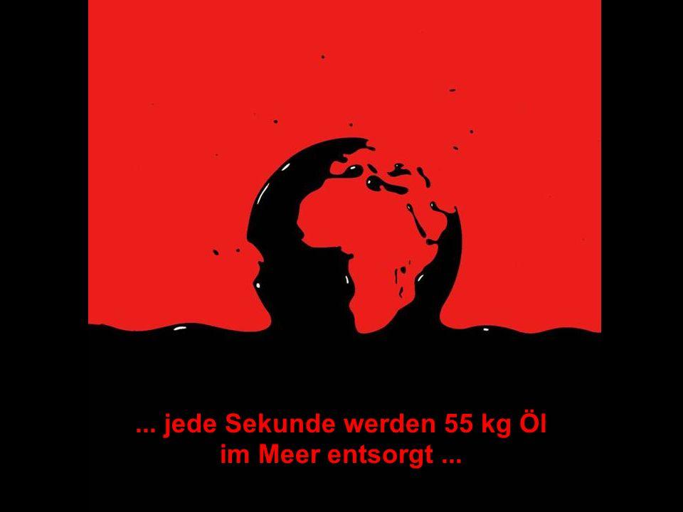 ... jede Sekunde werden 55 kg Öl im Meer entsorgt ...