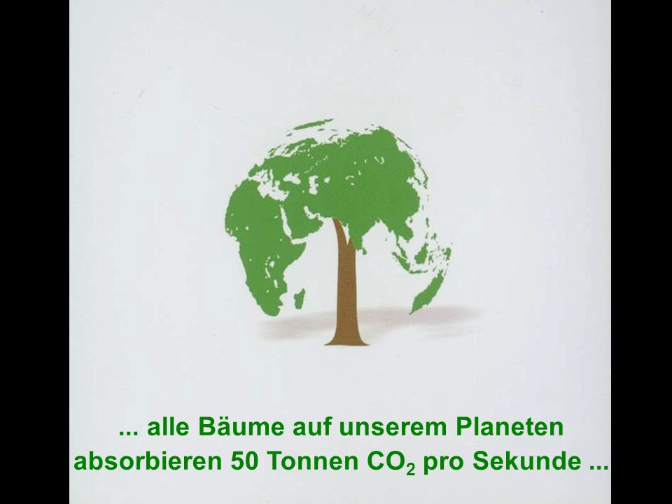 ... alle Bäume auf unserem Planeten