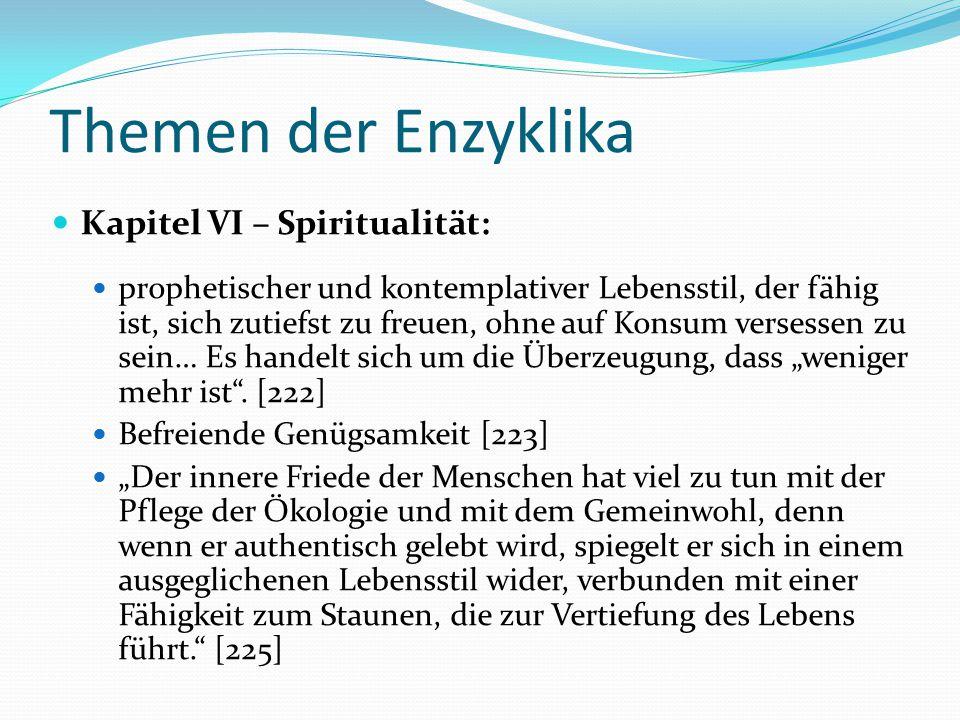 Themen der Enzyklika Kapitel VI – Spiritualität: