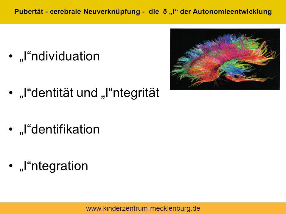 """""""I dentität und """"I ntegrität """"I dentifikation """"I ntegration"""