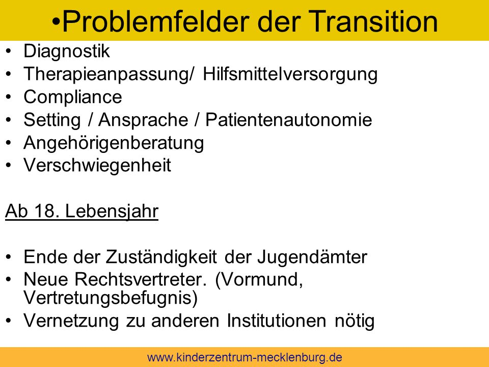 Problemfelder der Transition