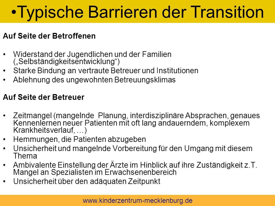 Typische Barrieren der Transition