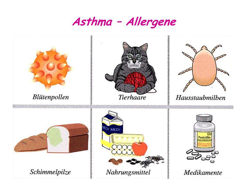 Asthma – Allergene