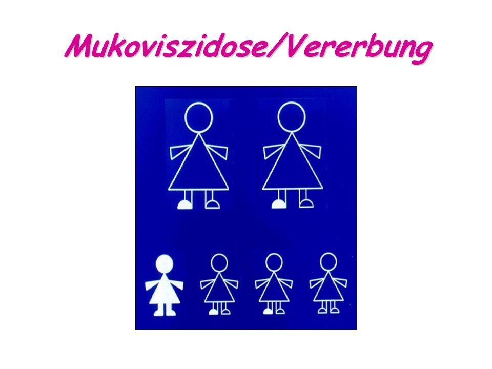 Mukoviszidose/Vererbung