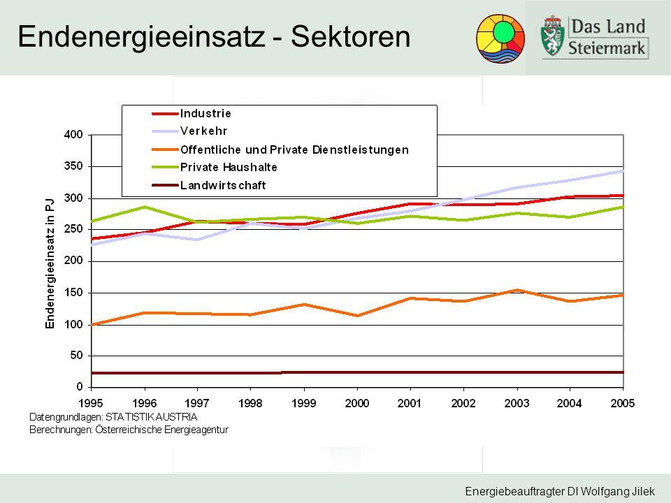 Endenergieeinsatz - Sektoren