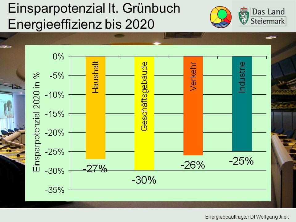 Einsparpotenzial lt. Grünbuch Energieeffizienz bis 2020