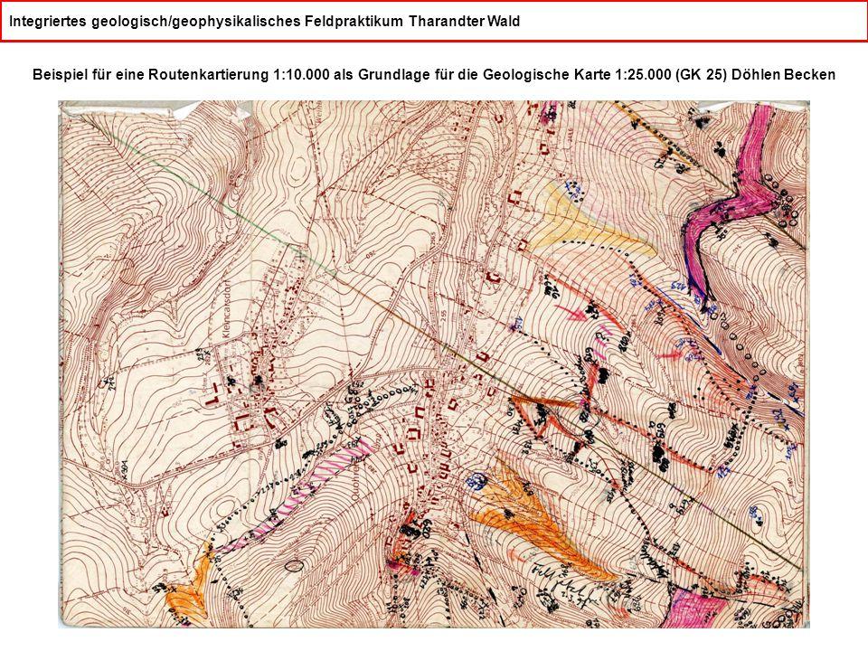 Integriertes geologisch/geophysikalisches Feldpraktikum Tharandter Wald