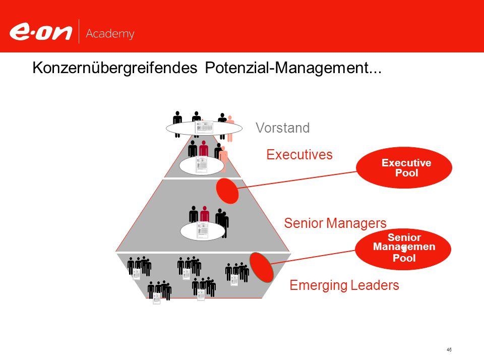    Konzernübergreifendes Potenzial-Management... Vorstand