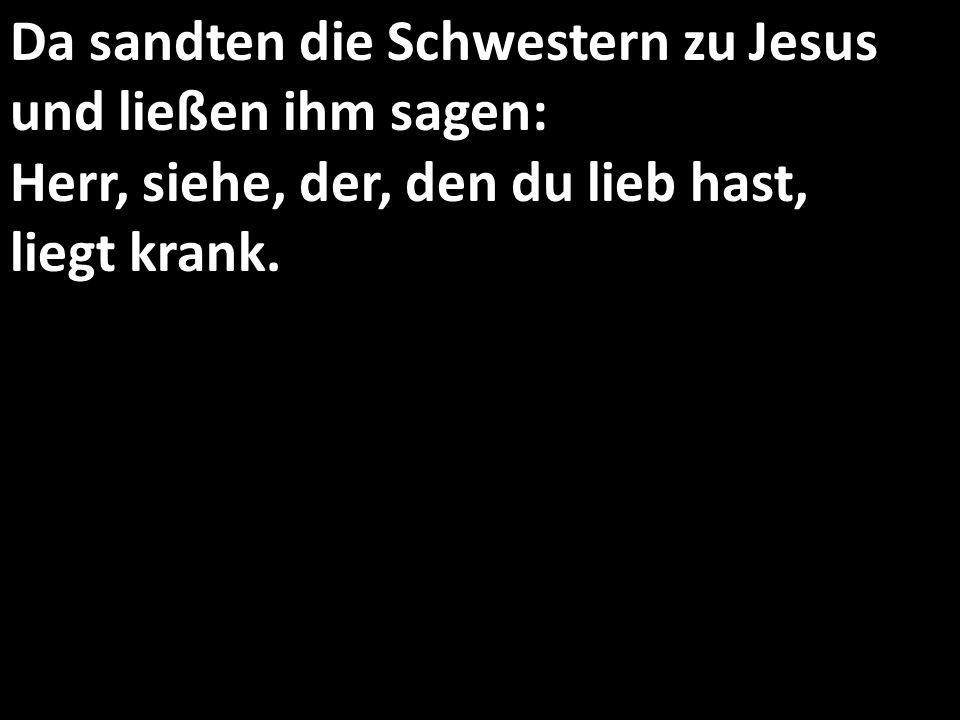 Da sandten die Schwestern zu Jesus und ließen ihm sagen: Herr, siehe, der, den du lieb hast, liegt krank.