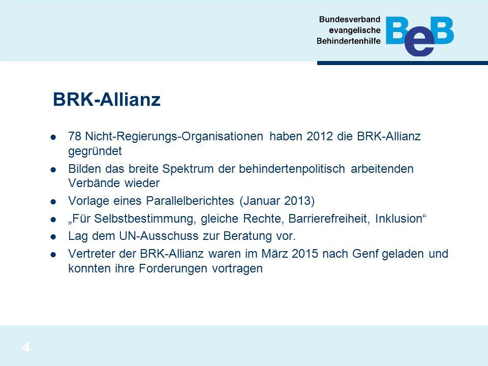 BRK-Allianz 78 Nicht-Regierungs-Organisationen haben 2012 die BRK-Allianz gegründet.