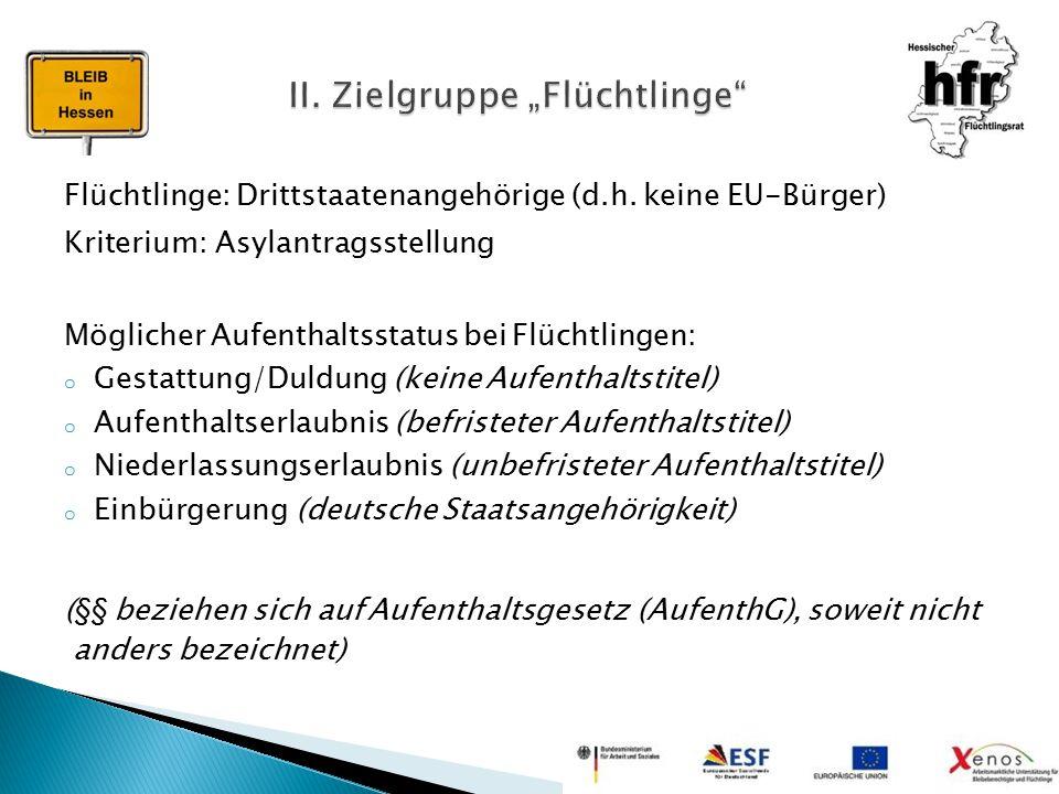 """II. Zielgruppe """"Flüchtlinge"""