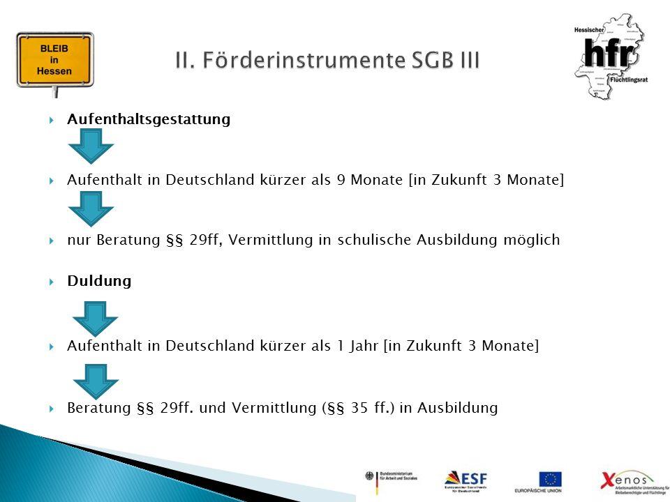 II. Förderinstrumente SGB III