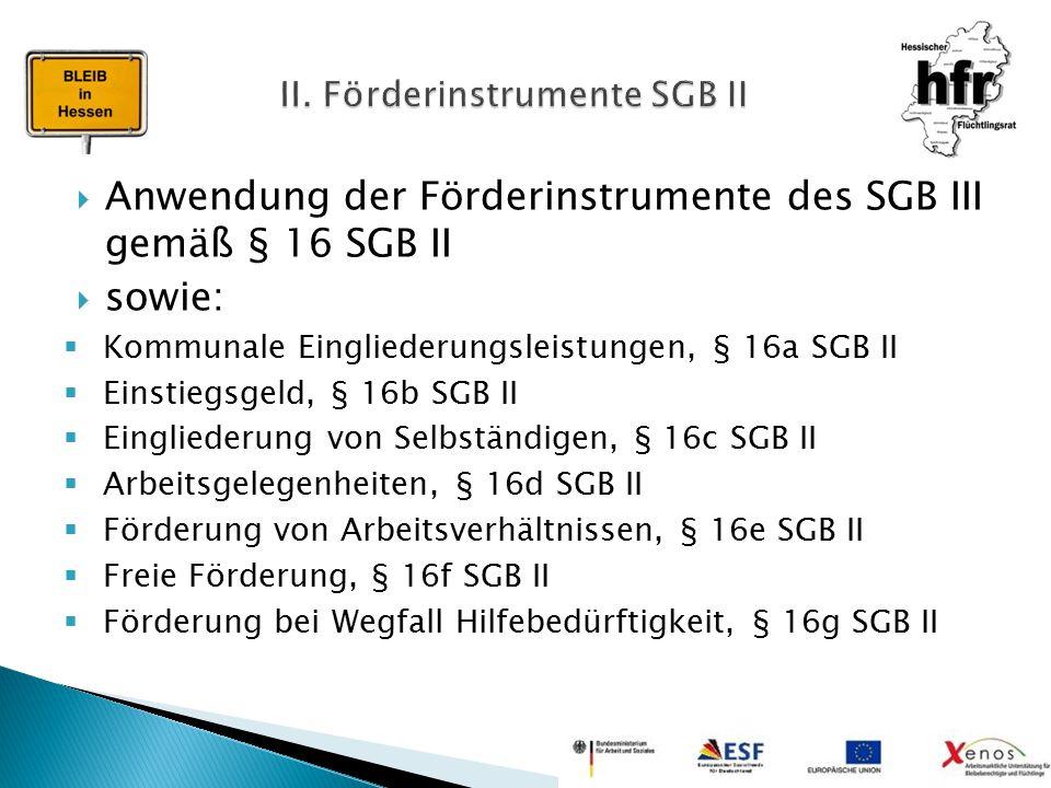 II. Förderinstrumente SGB II