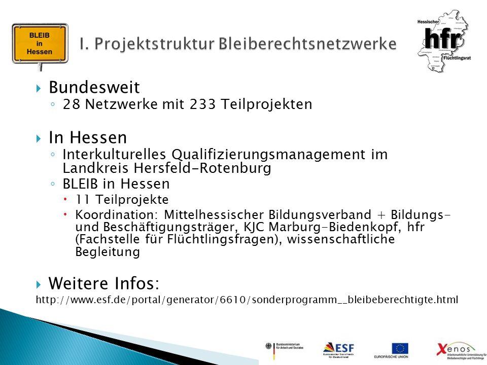 I. Projektstruktur Bleiberechtsnetzwerke