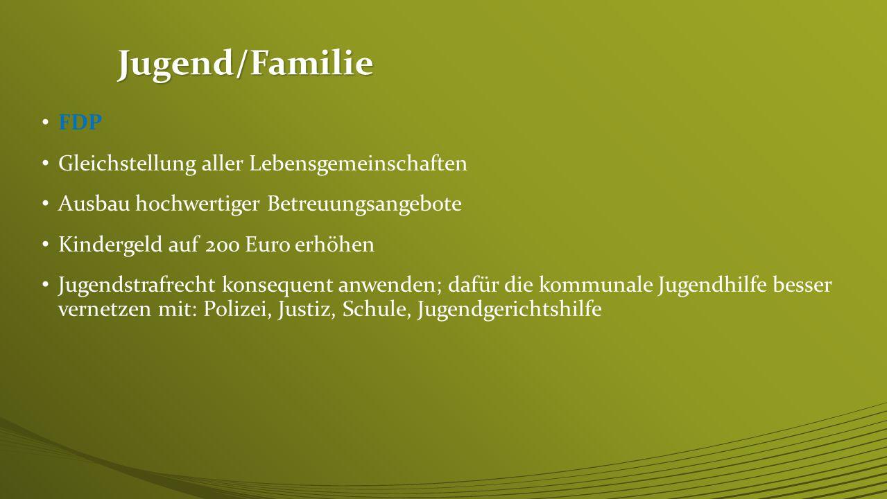 Jugend/Familie FDP Gleichstellung aller Lebensgemeinschaften