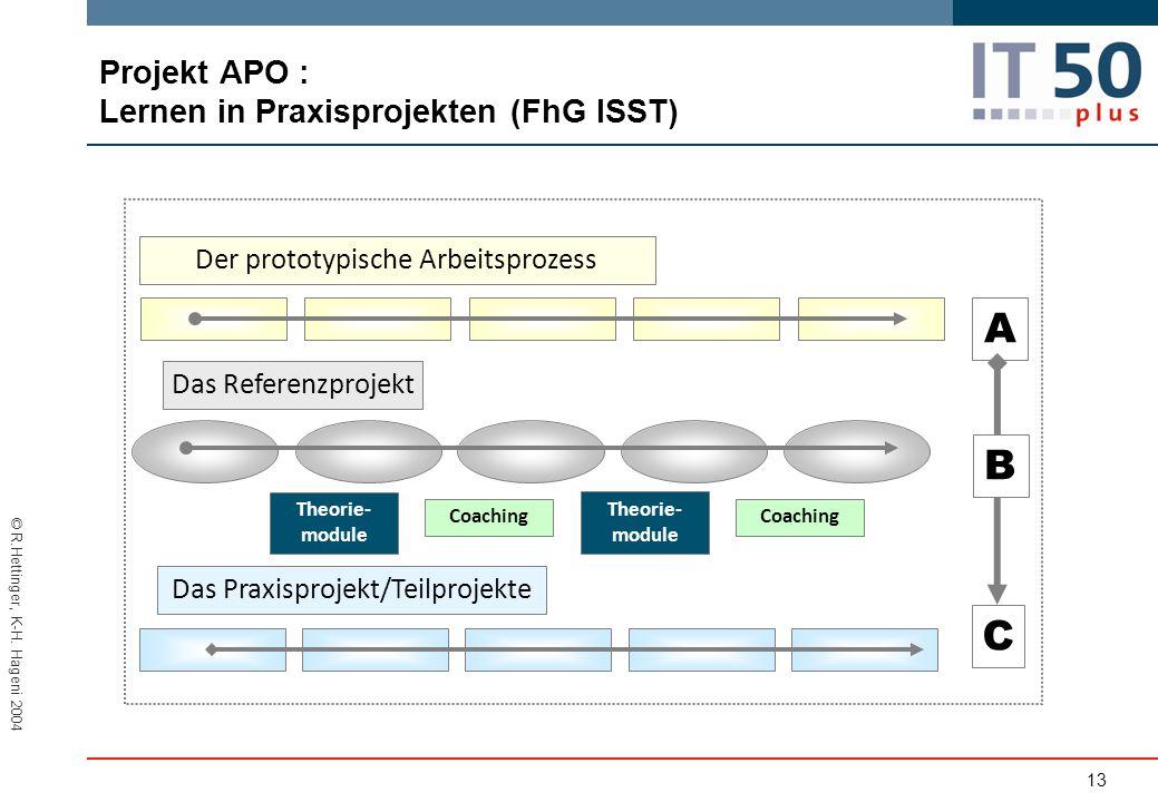 Projekt APO : Lernen in Praxisprojekten (FhG ISST)