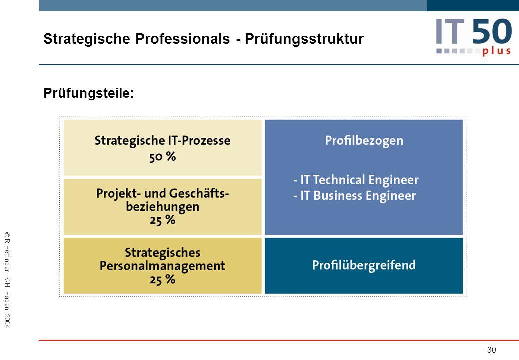 Strategische Professionals - Prüfungsstruktur