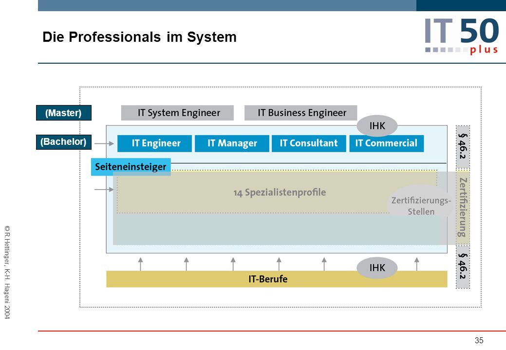 Die Professionals im System