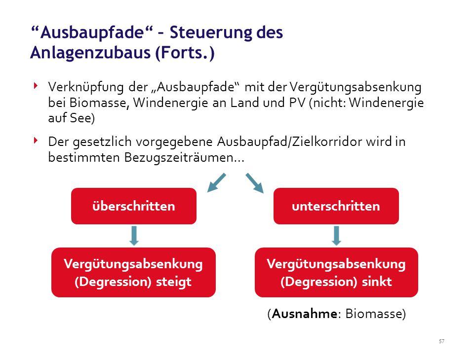 Ausbaupfade – Steuerung des Anlagenzubaus (Forts.)