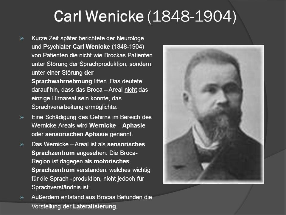 Carl Wenicke (1848-1904)