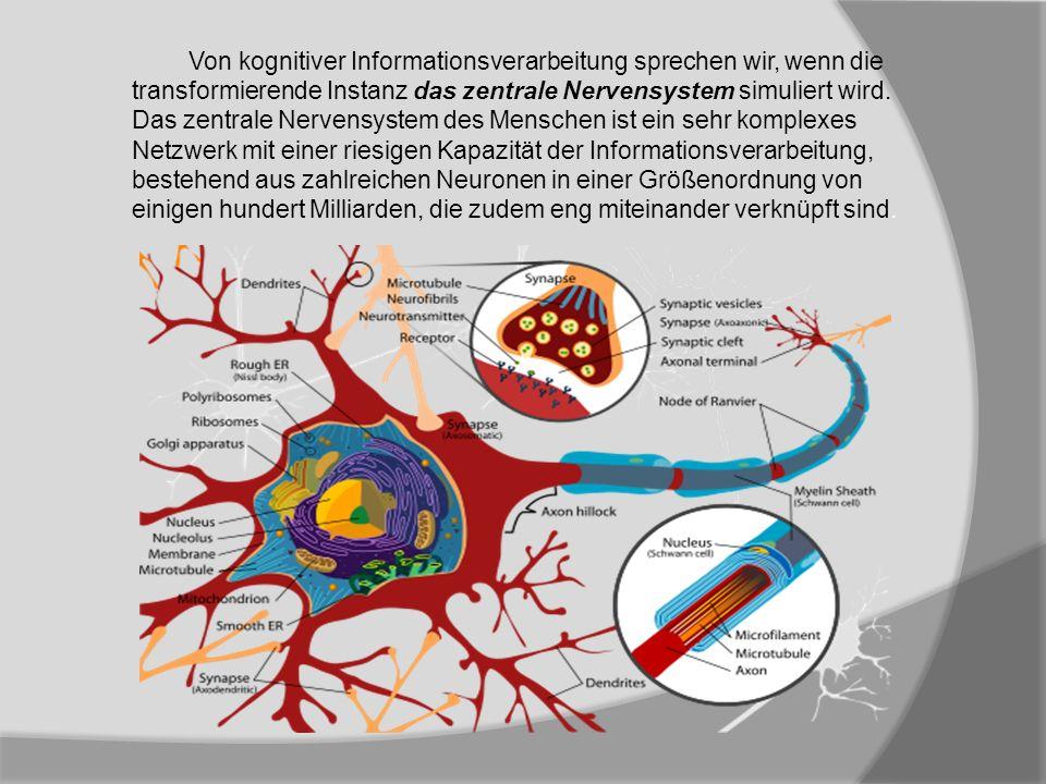 Von kognitiver Informationsverarbeitung sprechen wir, wenn die transformierende Instanz das zentrale Nervensystem simuliert wird.