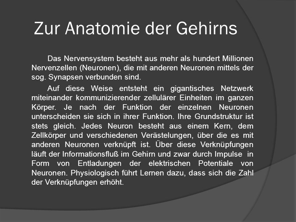 Zur Anatomie der Gehirns