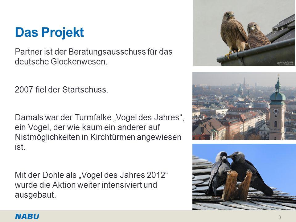 Das Projekt Partner ist der Beratungsausschuss für das deutsche Glockenwesen. 2007 fiel der Startschuss.