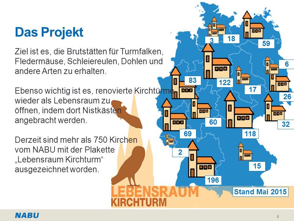 Das Projekt 18. 3. 59. Ziel ist es, die Brutstätten für Turmfalken, Fledermäuse, Schleiereulen, Dohlen und.