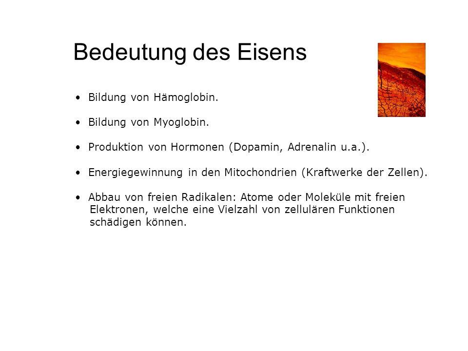 Bedeutung des Eisens Bildung von Hämoglobin. Bildung von Myoglobin.