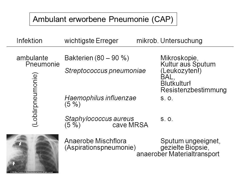 Ambulant erworbene Pneumonie (CAP)