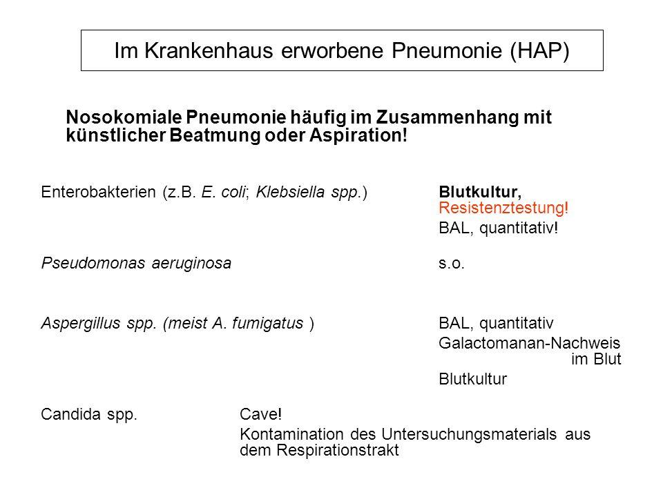 Im Krankenhaus erworbene Pneumonie (HAP)