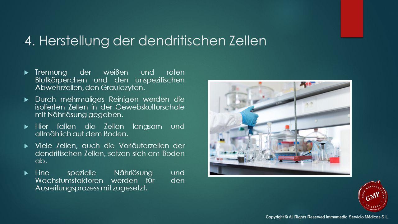 4. Herstellung der dendritischen Zellen