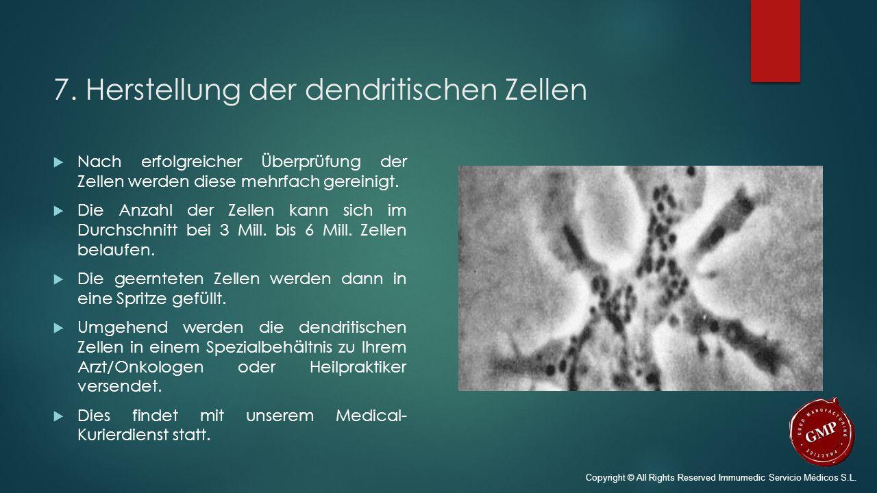 7. Herstellung der dendritischen Zellen