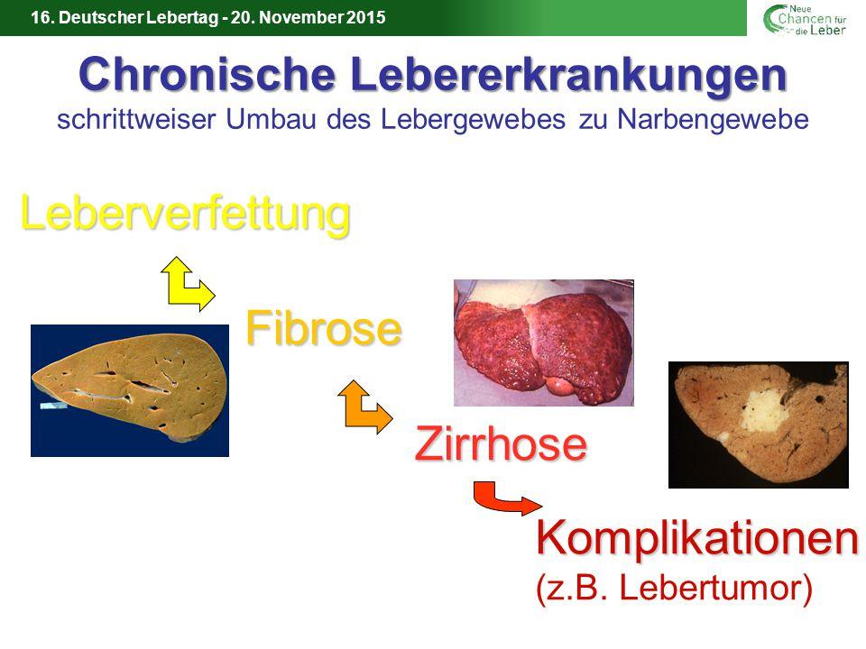 Leberverfettung Fibrose Zirrhose Komplikationen