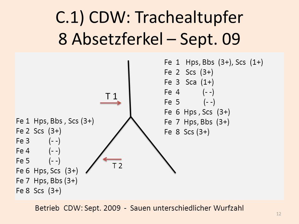 C.1) CDW: Trachealtupfer 8 Absetzferkel – Sept. 09