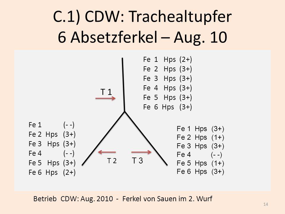 C.1) CDW: Trachealtupfer 6 Absetzferkel – Aug. 10