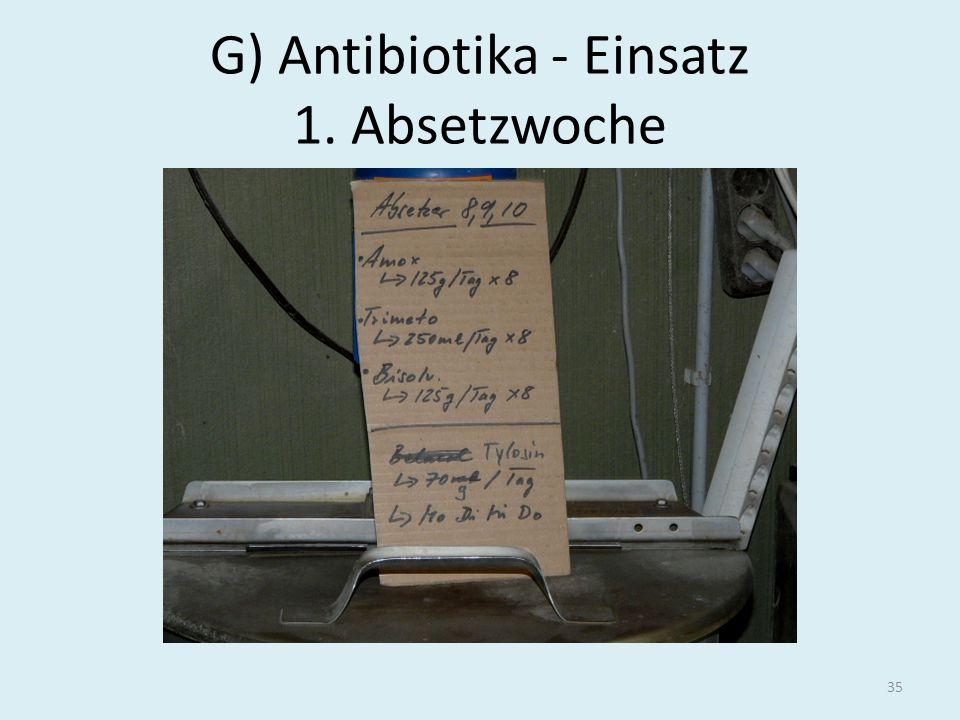 G) Antibiotika - Einsatz 1. Absetzwoche