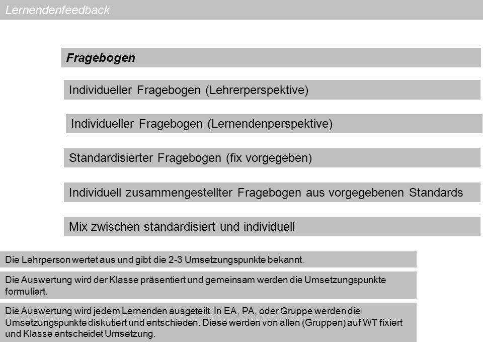 Individueller Fragebogen (Lehrerperspektive)